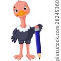 Funny ostrich cartoon 28245360