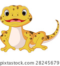 Cute lizard cartoon 28245679