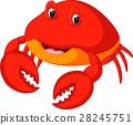 Cute crab cartoon 28245751