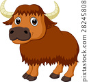 Cute bison cartoon 28245808