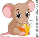 Cute mouse cartoon holding cheese 28245810