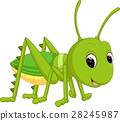 Cartoon funny cricket 28245987