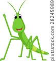 Praying mantis grasshopper cartoon 28245989