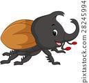 Cartoon stag beetle 28245994