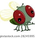 Flies cartoon 28245995