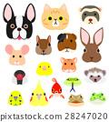 สัตว์เลี้ยง,หน้า,ใบหน้า 28247020