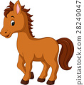 cute horse cartoon 28249047
