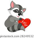 heart, raccoon, cute 28249532