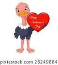 ostrich cartoon 28249884