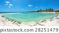 海滩 热带 海洋 28251479