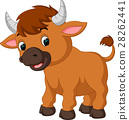 cute bull cartoon 28262441