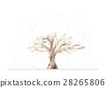 冬季公园,雪 28265806
