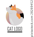 Calico Cat Vector Flat Design Illustration 28269452
