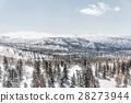 Beautiful Winter landscape 28273944