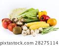 蔬菜 青菜 水果 28275114