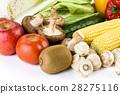 蔬菜 青菜 水果 28275116