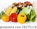 蔬菜 青菜 水果 28275118