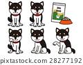 柴犬 丛林犬 狗 28277192