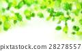 新的綠色留下風景背景 28278557