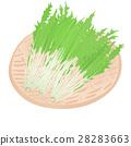 水菜 <お野菜とざる> 28283663