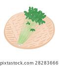 三つ葉 <お野菜とざる> 28283666