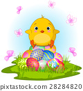 Yellow Easter Chick 28284820