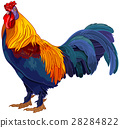 Rooster 28284822