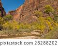 autumn canyon fall 28288202