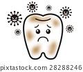 牙齒 齒輪 微生物 28288246