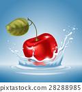櫻桃 水果 水 28288985