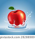蘋果 水果 水 28288989