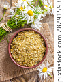 Dried and fresh chamomile flowers 28291593