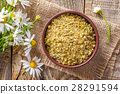 Dried and fresh chamomile flowers 28291594