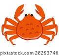 crab, crabs, crustacean 28293746