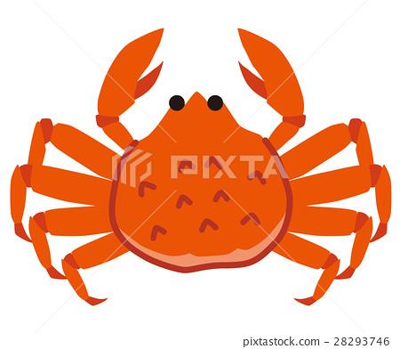 crab, crabs, crustacean 28293746