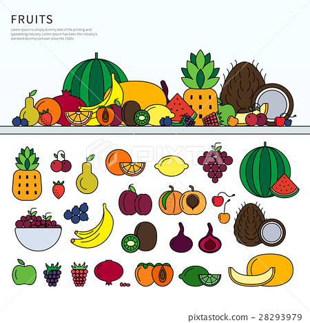 Many fruits on the table 28293979