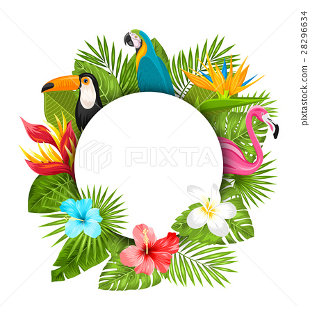 Summer Clean Card With Tropical Plants 28296634