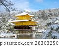 Snow makeup of Kinkakuji 28303250