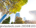 辦公區和綠色的高層建築 28308103