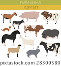 farming, pig, goat 28309580