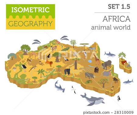 Flat 3d isometric Africa flora and fauna map  28310009
