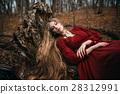 女巫 森林 樹林 28312991
