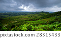 Asia Landscape : Rice Terraces in Bali 28315433