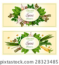 Spices and herbs banner set for food design 28323485