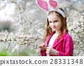 可爱的 开花 樱桃 28331348