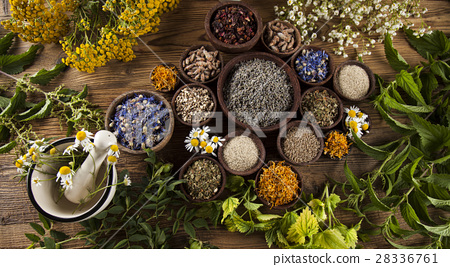Alternative medicine, dried herbs and mortar  28336761