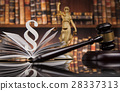 Law books, Paragraph justice concept, Court gavel 28337313