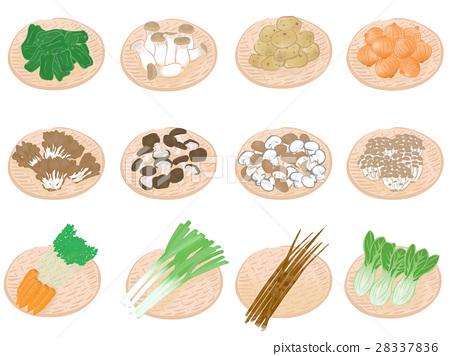 蔬菜 插图 筛子 28337836