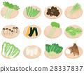 蔬菜 一套 插圖 28337837