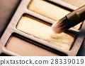 palette, makeup, eye 28339019